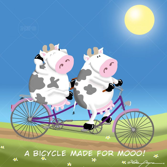 007 A BICYCLE MADE FOR MOOO