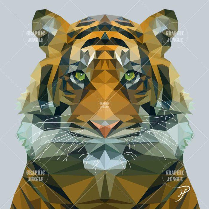 01 TIGER - Graphic Jungle