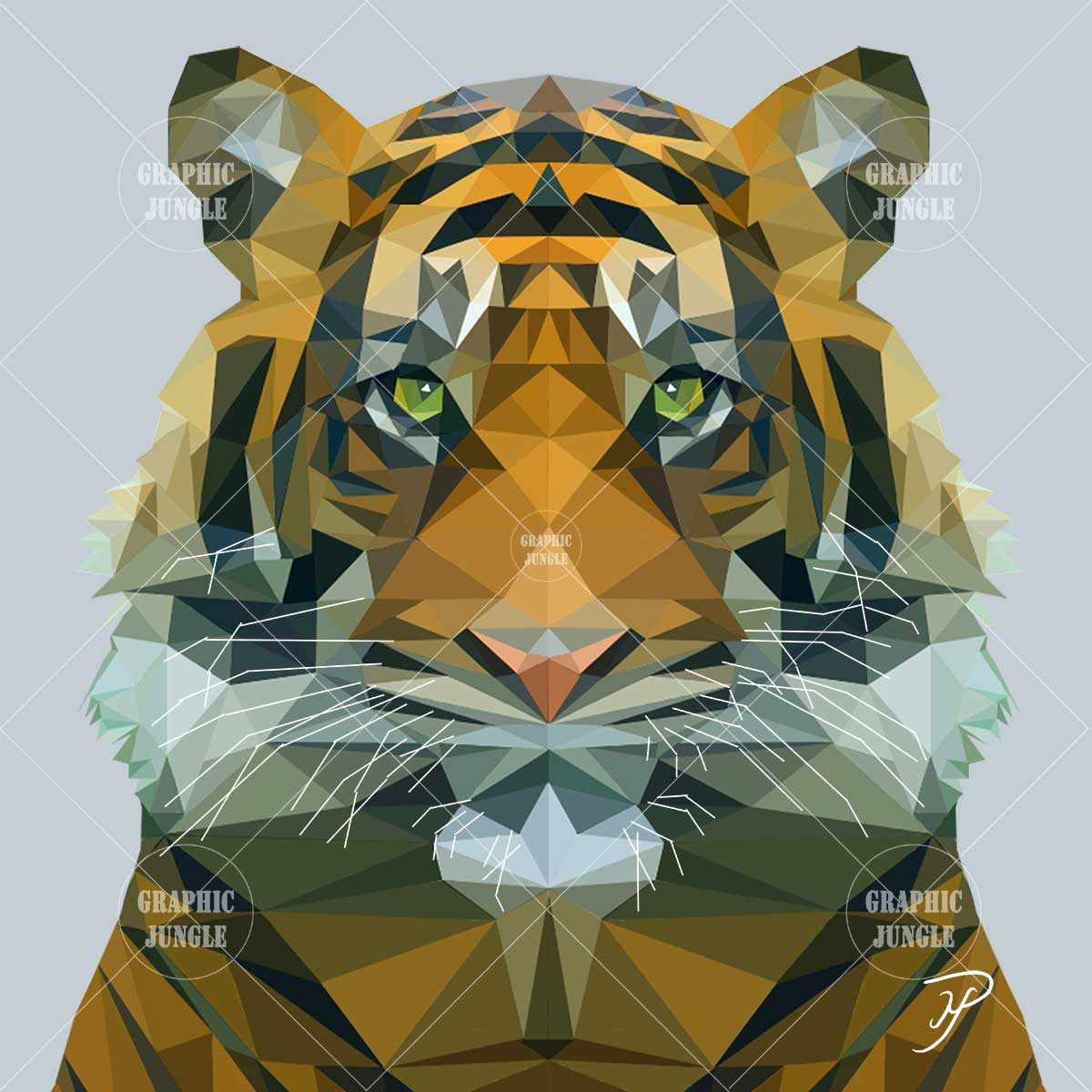01 TIGER - Graphic Jungle