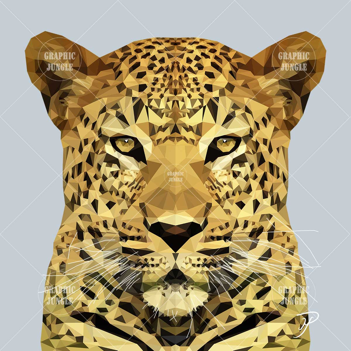 02 LEOPARD - Graphic Jungle