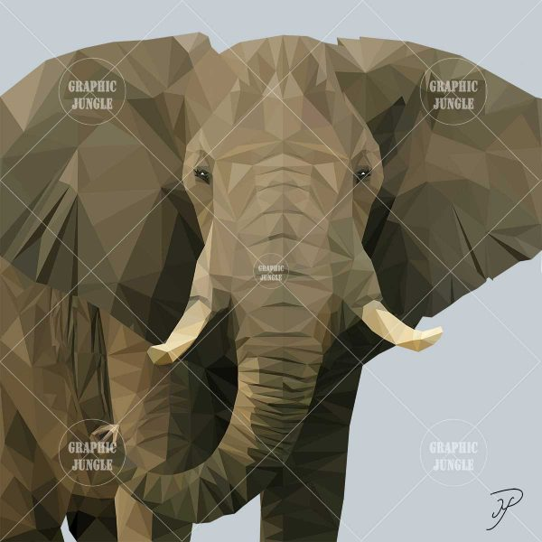 03 ELEPHANT - Graphic Jungle