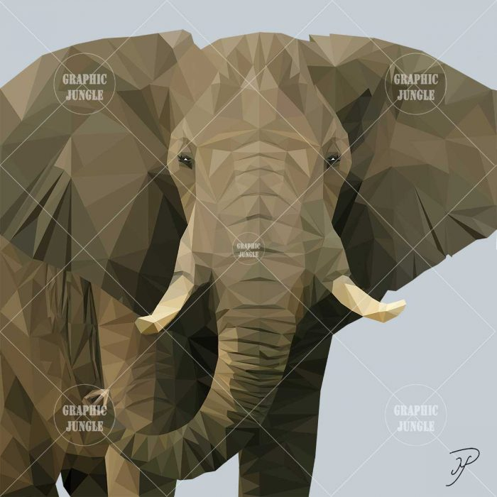 03 ELEPHANT - Graphic Jungle