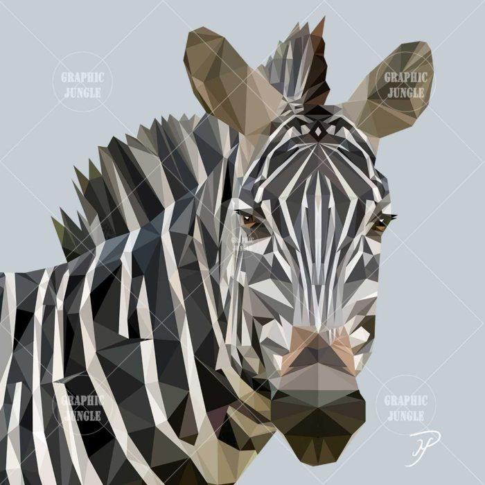 05 ZEBRA - Graphic Jungle