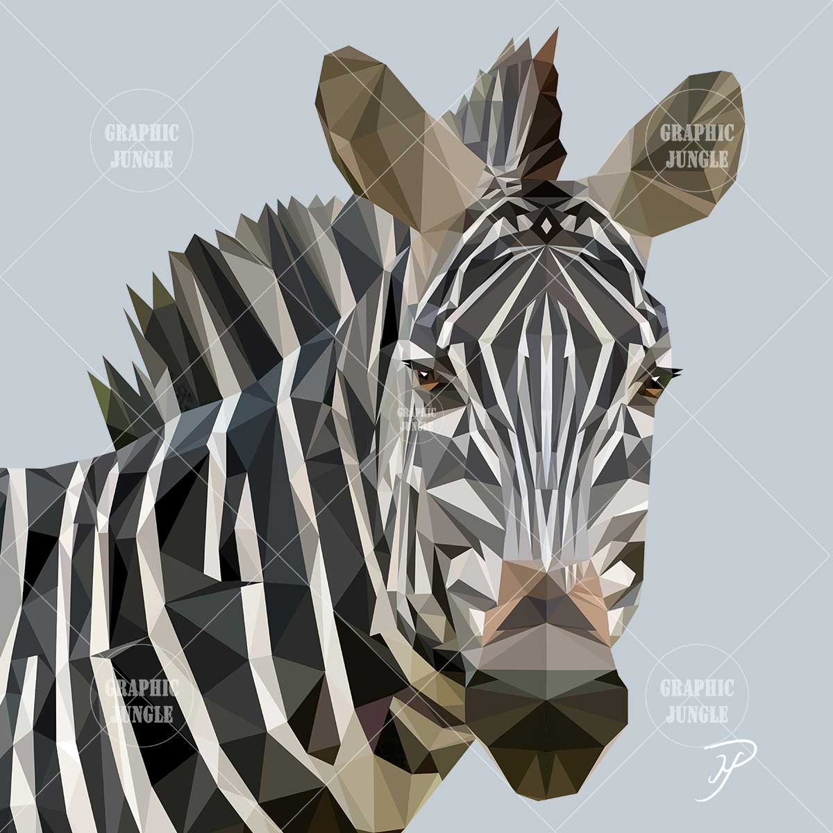 05 ZEBRA - Graphic Jungle