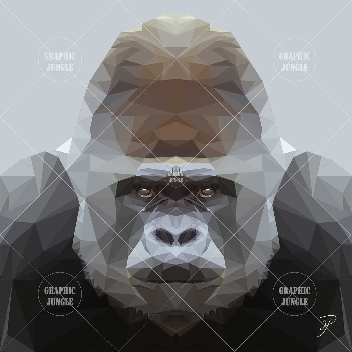 07 GORILLA - Graphic Jungle