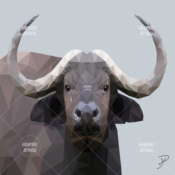 08 BUFFALO - Graphic Jungle