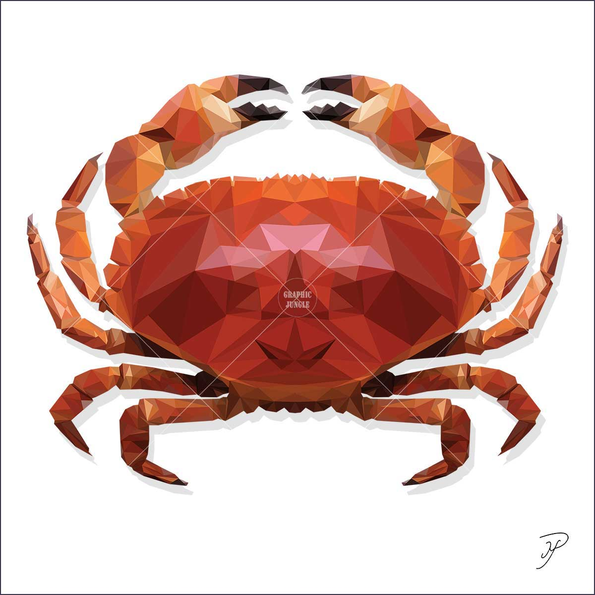 09 CRAB - Graphic Jungle