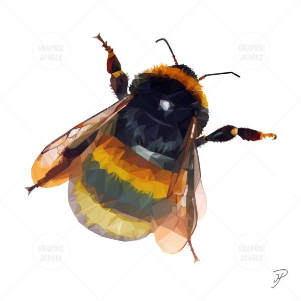 10 BEE SQUARE WHITE