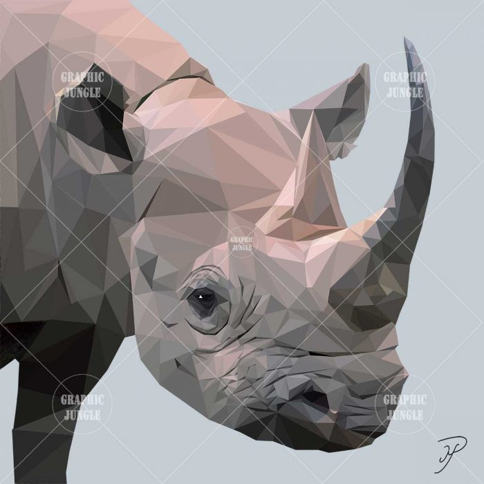 12 RHINO - Graphic Jungle