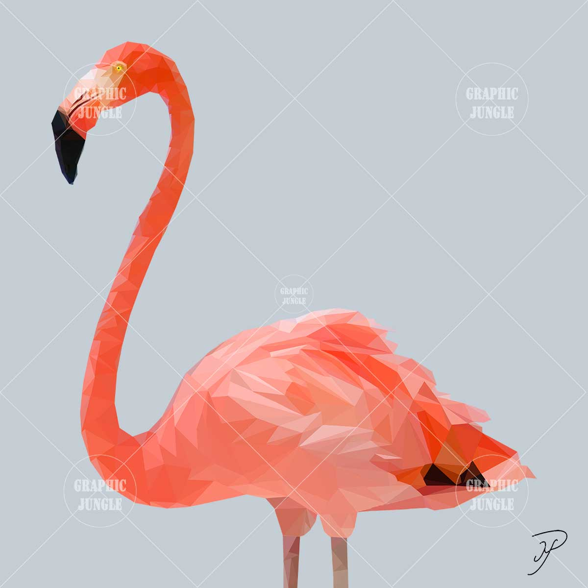 13 FLAMINGO - Graphic Jungle