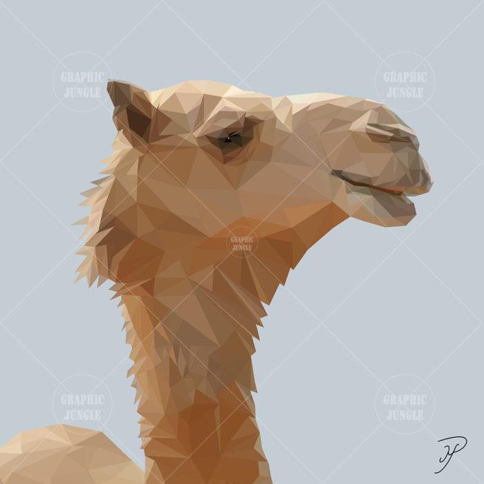 14 CAMEL SQUARE