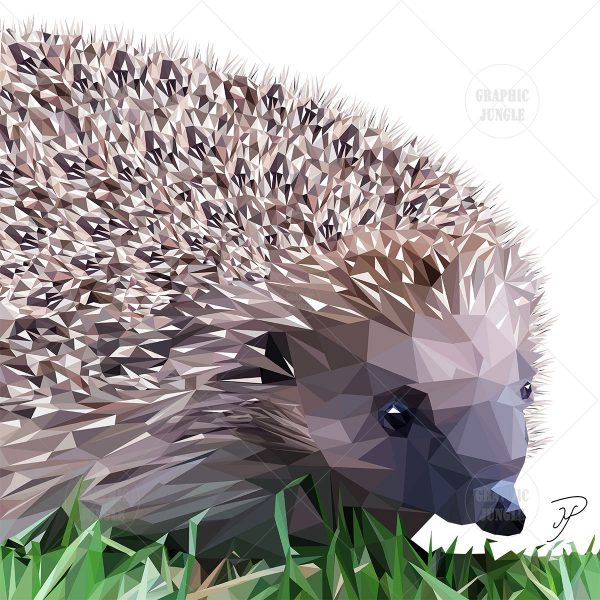 24 HEDGEHOG SQUARE WHITE